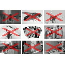 Pest Reject Originali kenkėjų atbaidymo sistema