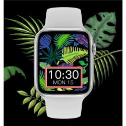 Išmanusis laikrodis IWO W66 DT100 Smartwatch 2021 SILVER