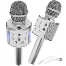 Karaokė mikrofonas - kolonėlė su balso keitimo efektais, sidabrinis, WS-858